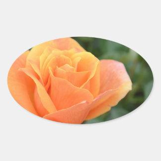 oval sticker with orange rose