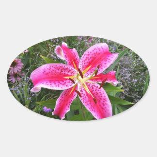 Oval Stickers - Stargazer Lily