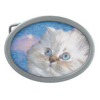 Óvalo de la hebilla del cinturón del gato hebillas cinturón ovales