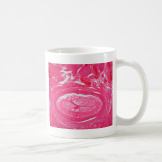 Ovary cells under the microscope. coffee mug