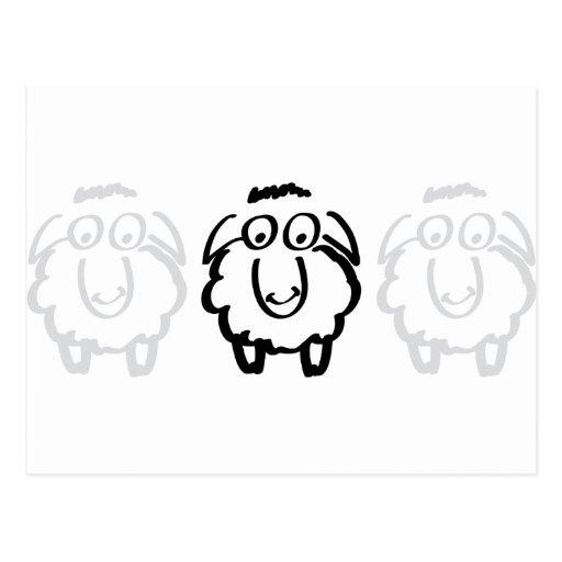 ovejas blancas de las ovejas negras tarjeta postal
