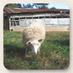 Ovejas blancas en la granja posavasos