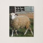 Ovejas blancas jovenes en la granja rompecabezas con fotos