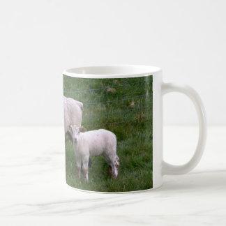 Ovejas con el cordero taza de café