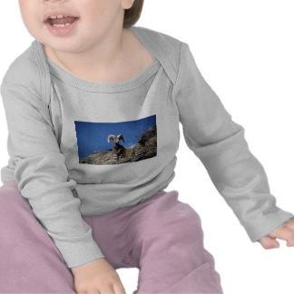 Ovejas de Bighorn (alarma del espolón en la cara Camiseta