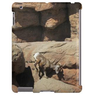 Ovejas de Bighorn Funda Para iPad