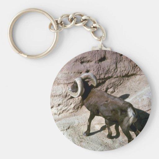 Ovejas de carnero con grandes cuernos del desierto llavero personalizado