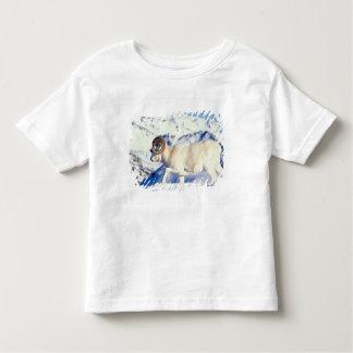 ovejas de dall, dalli del Ovis, espolón lleno del Playera De Bebé