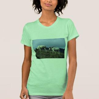 Ovejas de Dall (espolones grandes) Camisetas