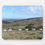 Ovejas de Dartmoor Alfombrillas De Raton