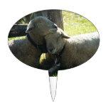 Ovejas de la oveja del amor decoraciones para tartas