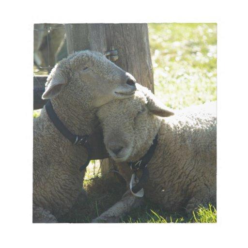 Ovejas de la oveja del amor bloc