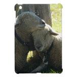 Ovejas de la oveja del amor iPad mini fundas