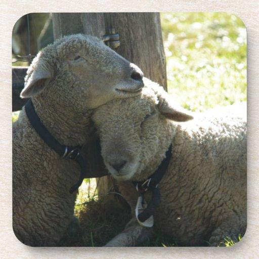 Ovejas de la oveja del amor posavaso
