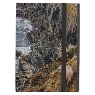 Ovejas del sur de la costa de Devon en la trayecto