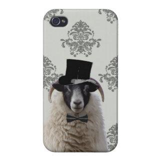 Ovejas divertidas del novio en sombrero de copa iPhone 4 funda