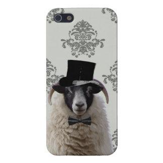 Ovejas divertidas del novio en sombrero de copa iPhone 5 fundas