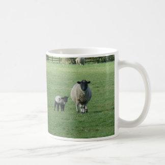Ovejas en el campo taza de café