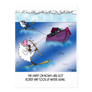 Ovejas en el esquí acuático de la arca postal