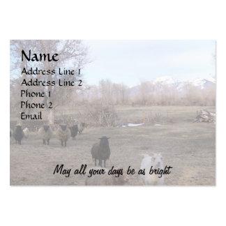 Ovejas en pasto seco tarjetas de visita grandes