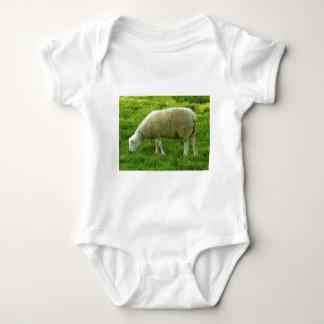 Ovejas - Mouton Mameluco De Bebé