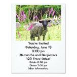 Ovejas negras invitación 10,8 x 13,9 cm