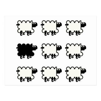 Ovejas negras tarjetas postales