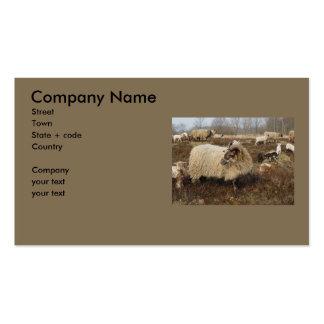 Ovejas - ovejas en campo del brezo tarjetas de visita