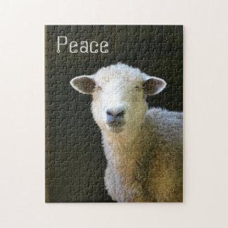 Ovejas pacíficas puzzles con fotos