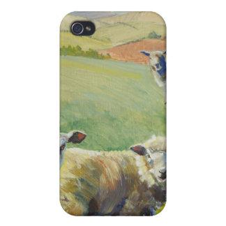 Ovejas que se colocan en la pintura del brillo del iPhone 4/4S fundas