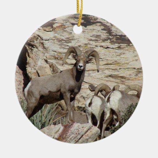 Ovejas rojas del Big Horn de la roca Adornos De Navidad