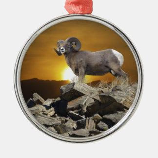 Ovejas salvajes y puesta del sol del Big Horn de l Ornaments Para Arbol De Navidad