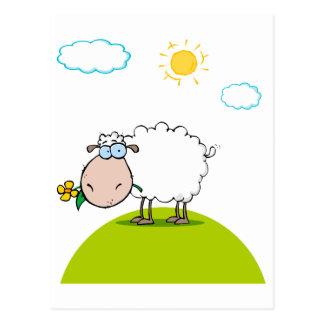 ovejas tontas en una colina con una flor tarjetas postales