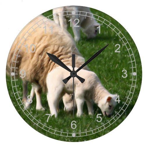 Ovejas y corderos relojes