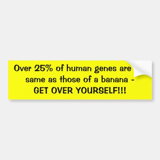 Over 25% of human genes are the same as those o... bumper stickers