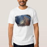 Over Gulf of Aden and Somalia T-shirt
