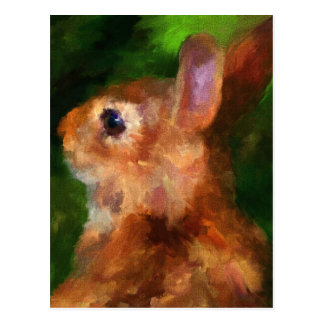 Over My Shoulder Rabbit Postcard