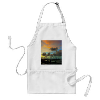 Over The Gandy Adult Apron