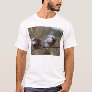 overcast cotton T-Shirt