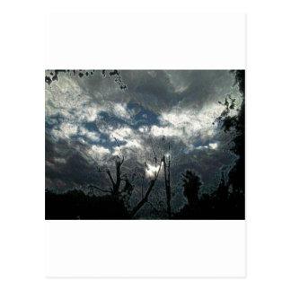 Overcast Postcard