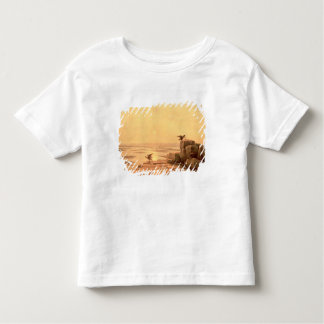 Overflow of the Nile, 1842 Toddler T-shirt