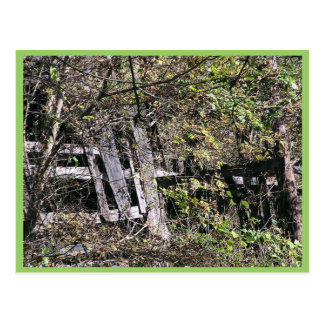 Overgrown Barn Near The Clinch River At Fort Black Postcard