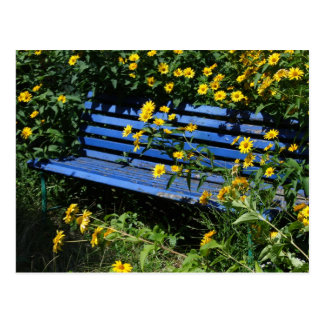overgrown blue bench postcard
