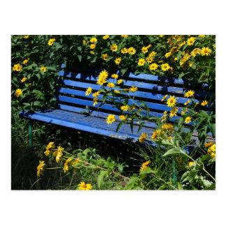 overgrown blue bench postcard