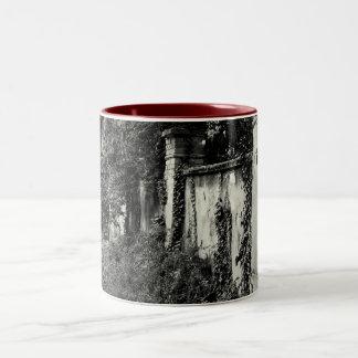 Overgrown garden wall Two-Tone coffee mug