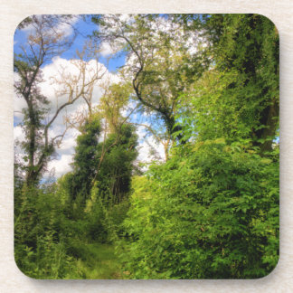 Overgrown Woodland Path Beverage Coasters