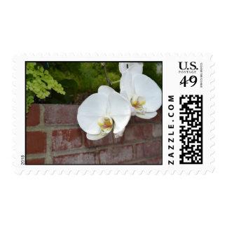 Overhang Stamps