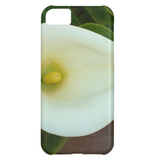 Overhead Shot Of A Heart Shaped Cream Calla Lily Cover For iPhone 5C
