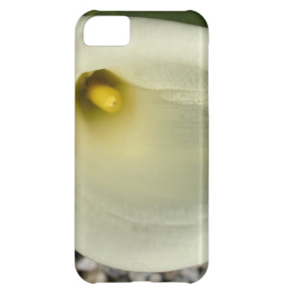Overhead Shot Of A Heart Shaped Cream Calla Lily iPhone 5C Cover