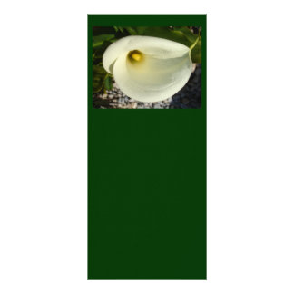 Overhead Shot Of A Heart Shaped Cream Calla Lily Rack Card